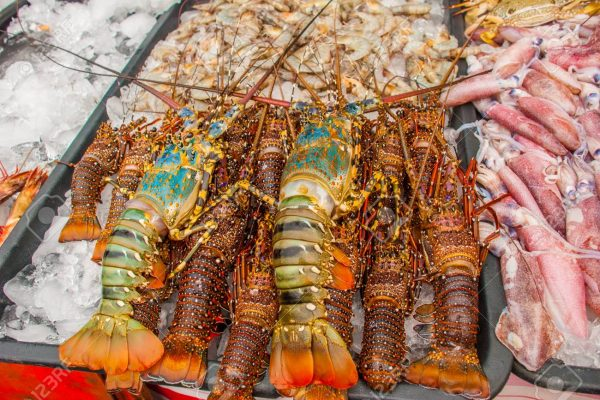 Seafood on ice at the fish market. Malaysia. Lobstery sale. Variety of grilled seafood in Kota Kinabalu market.